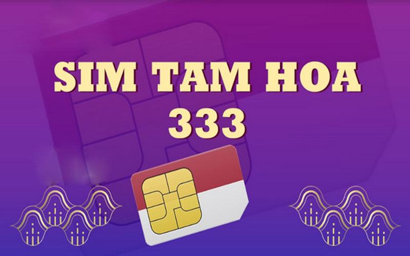 sim-tam-hoa-3-1