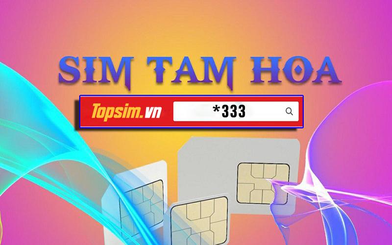 sim-tam-hoa-3
